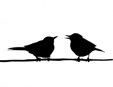Vector drawing two birds sitting on branch