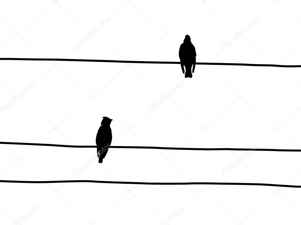 vector silhouette birds to waxwings on wire  u2014 stock vector