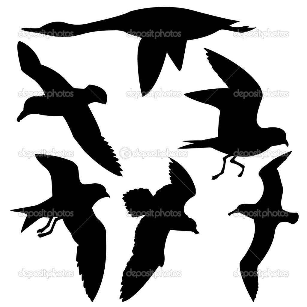Stock Illustration Flying Birds
