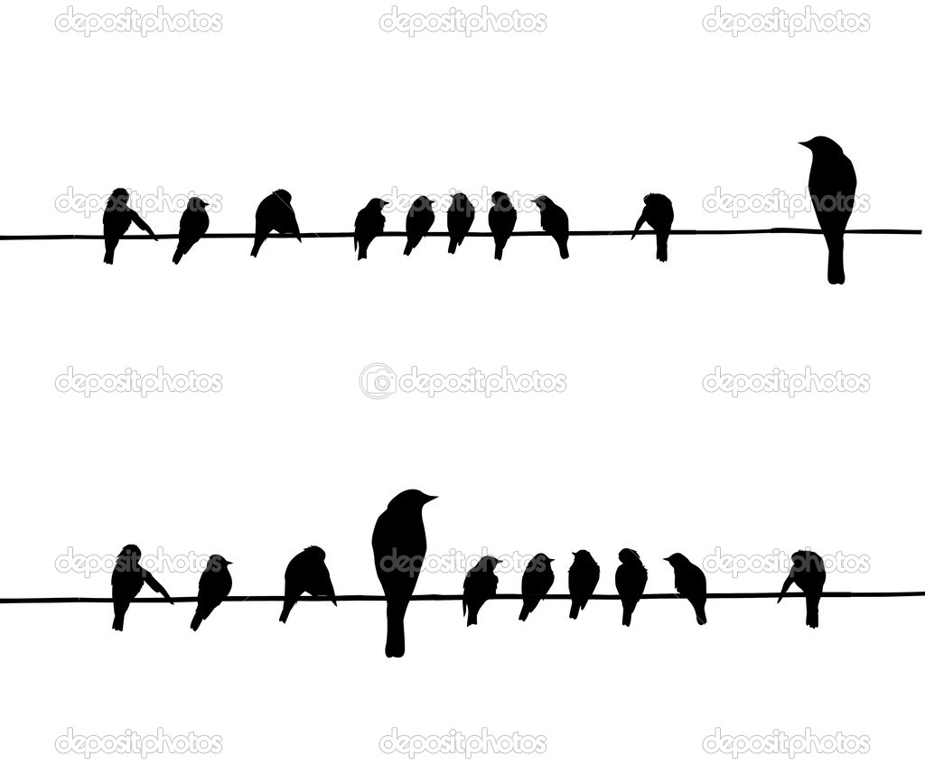 Vector silhouettes of the birds on wire