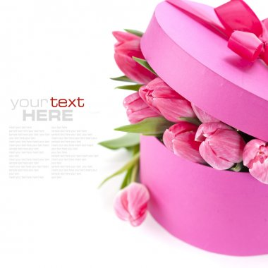 Pink tulips and gift box on a white background (with sample text) stock vector