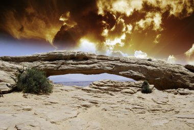 Nature of Arches National Park