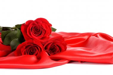 Red rose isolated on a white