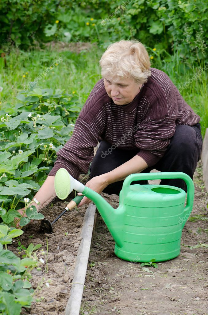 The elderly woman works on a kitchen garden