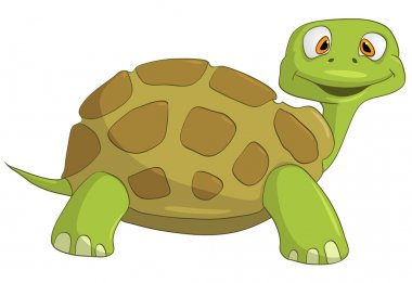 Cartoon Character Turtle