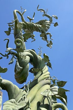 A beanstalk growing up into the blue sky