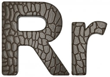 Alligator skin font R lowercase and capital letters