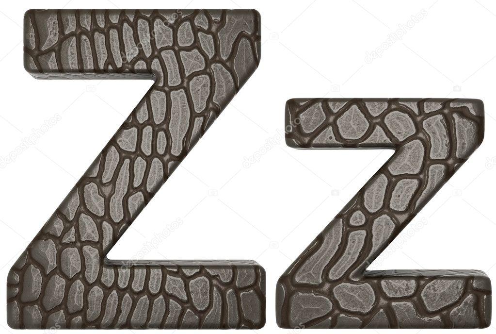 piel de cocodrilo Letra z en minúsculas y mayúsculas — Foto de stock ...