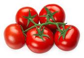 červené čerstvá rajčata