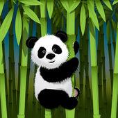 Fotografie zvědavý panda