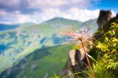 Photo Beautiful mountains landscape