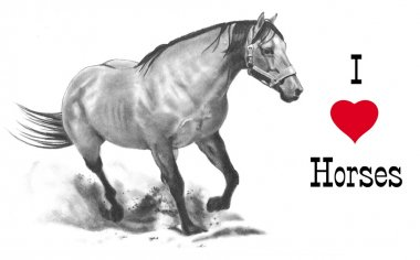 I Love Horses; Freehand Pencil Drawing