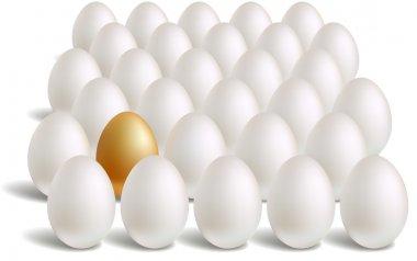 White & unique gold eggs rows