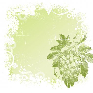 Grunge vector background with hand drawn bunch of grapes