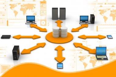 Network Database