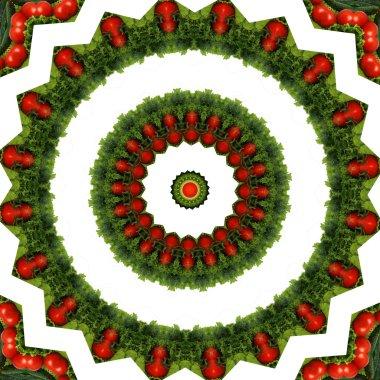 Kaleidoscope vegetable