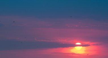 Picturesque sunset