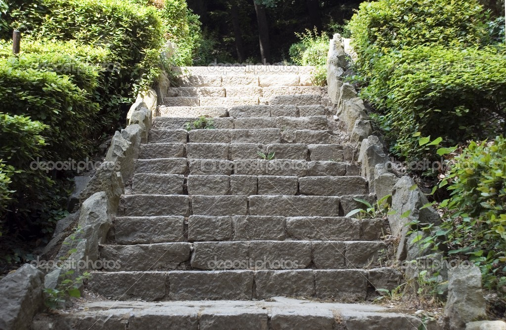 Stone ladder