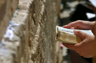 Prayer holds Torah during prayer at Western Wall.
