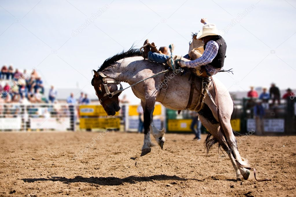 Rodeo Cowboy — Stock Photo, Image