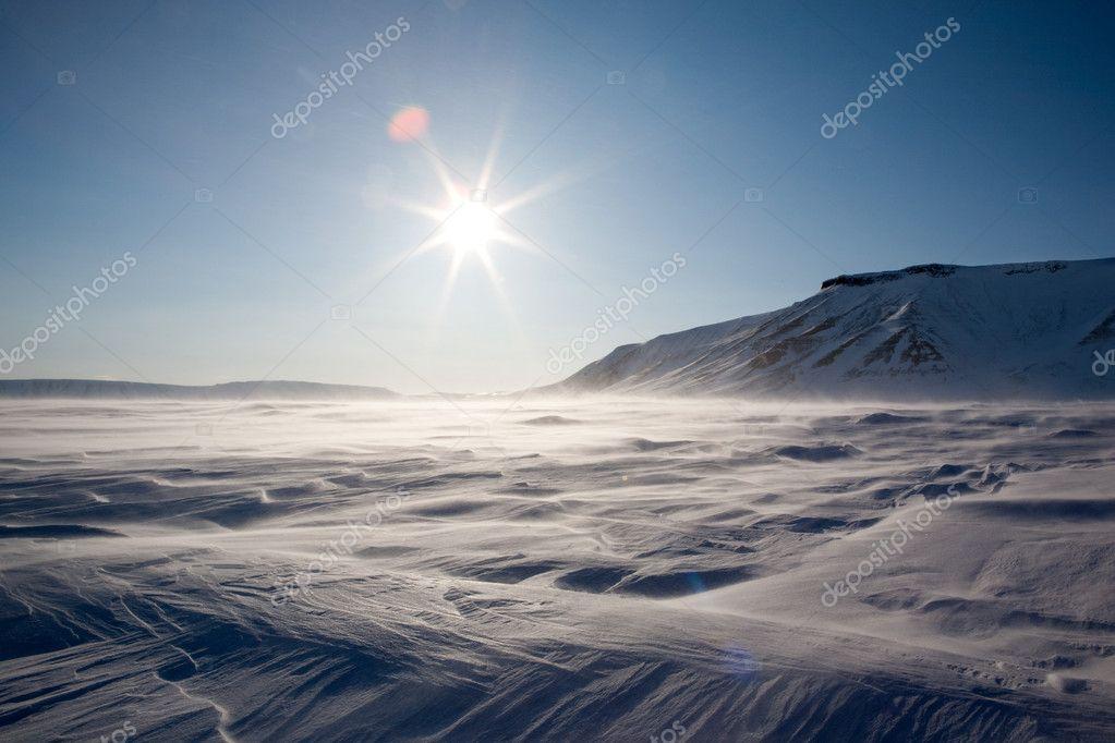 Frozen Arctic Landscape