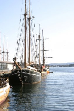Old Wooden Sailing Ships