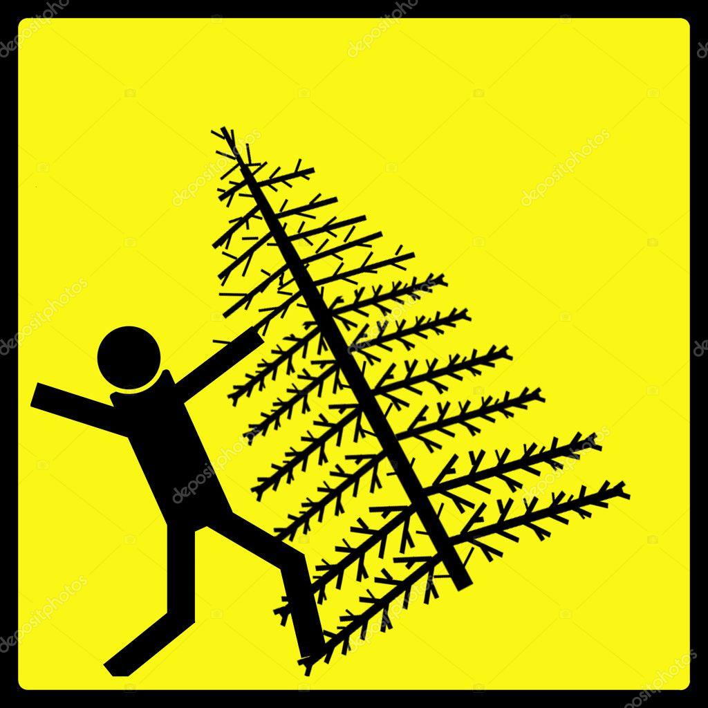 Christmas Tree Fall — Stock Photo © SimpleFoto #5722187
