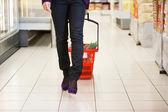 Fotografie žena s nákupní košík