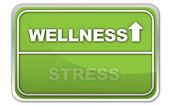 Wellness stresu