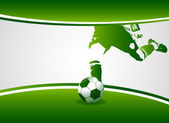 Fotografie Soccer player_5