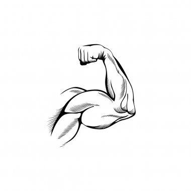 Arm muscles (sketch mans hand on white) stock vector