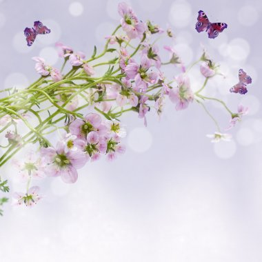 Spring Morning Concept - Flowers with Dew and Butterfly on backg