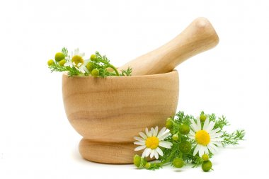 Medicine Camomile flowers - Herbal Treatment