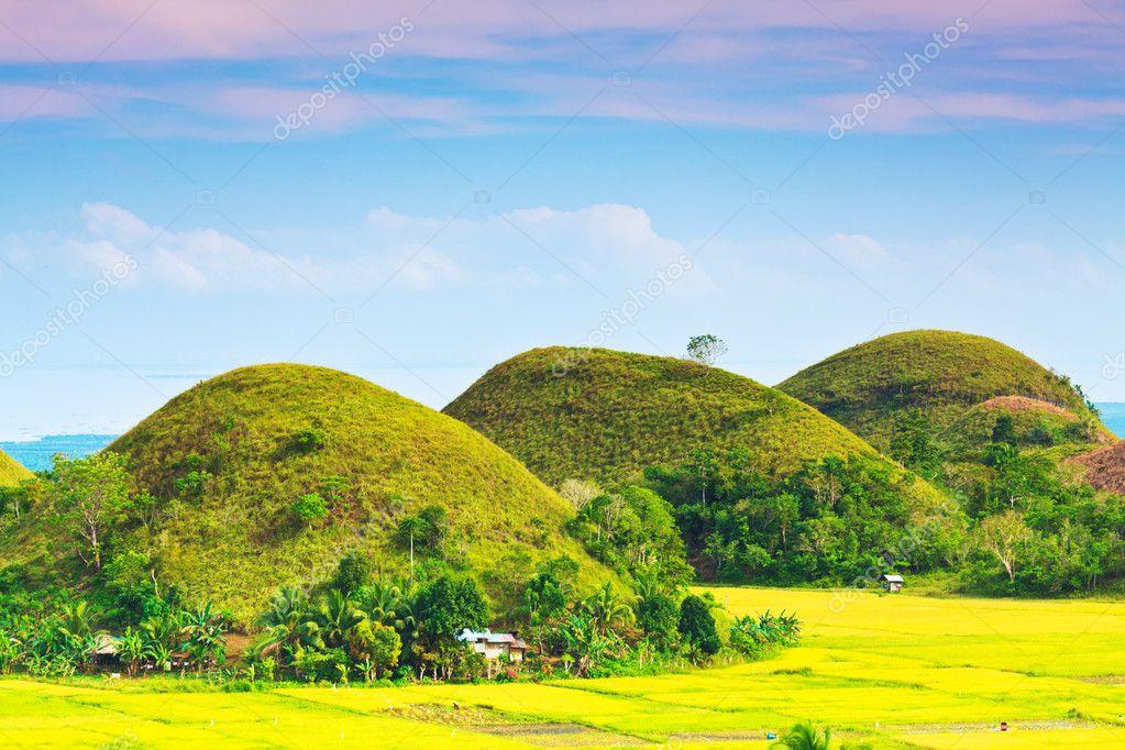 Фотообои Chocolate Hills