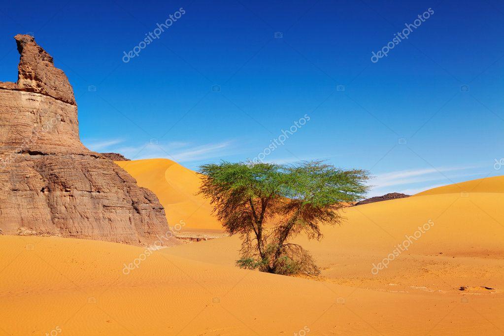 ελεύθερη έρημος μου ώριμη γιαγιά πορνό
