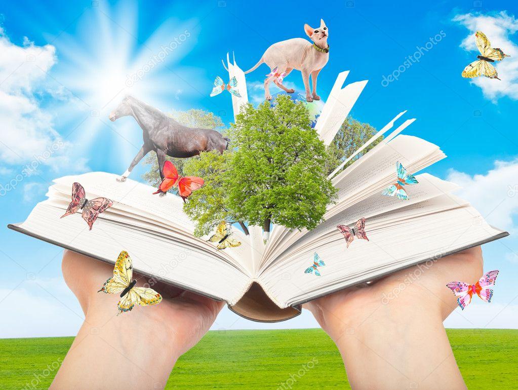 Magic book in human hands.