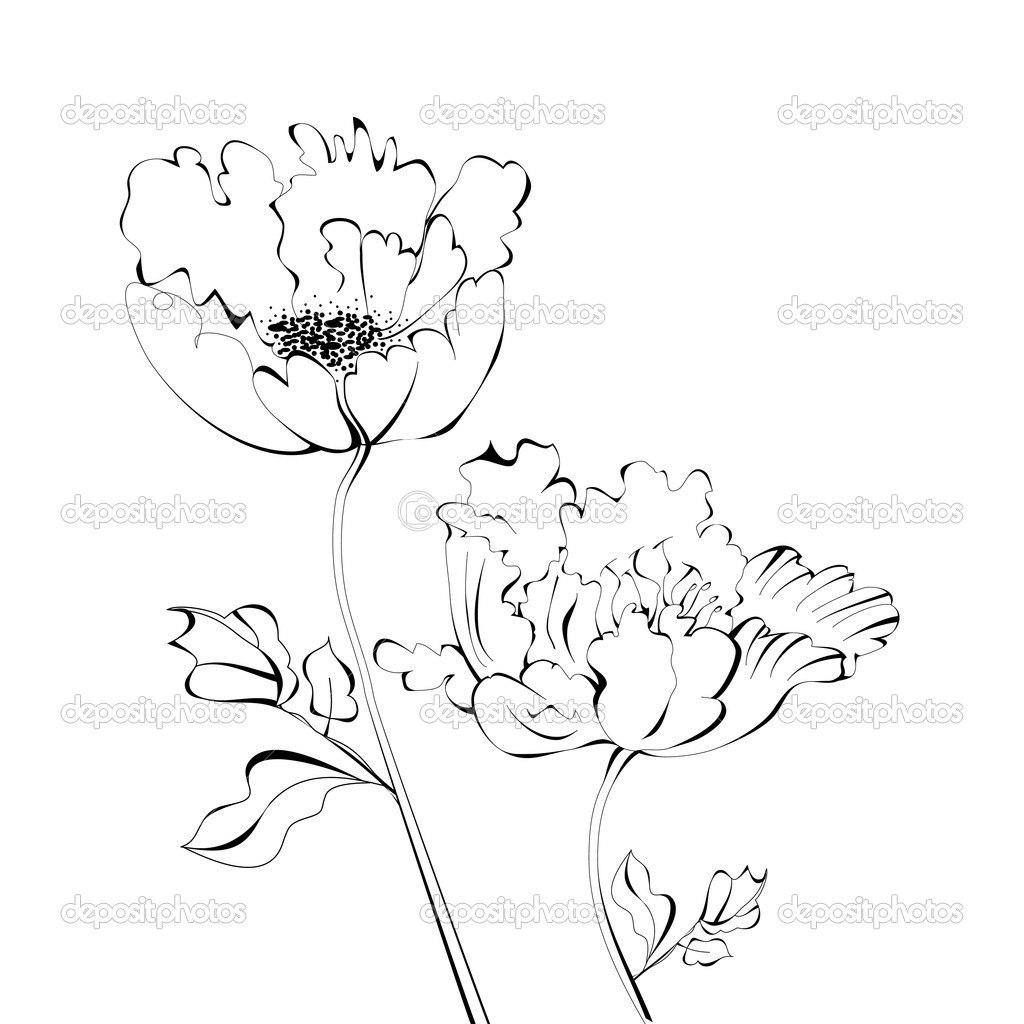 Эскиз с цветами