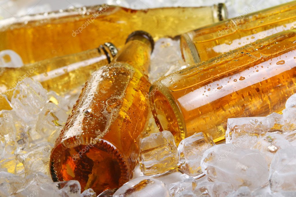 Bottles of beer lying in the ice