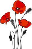 Fotografie makové květinové pozadí