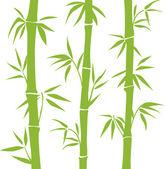 Fényképek bambusz