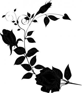 rose silhouette curl