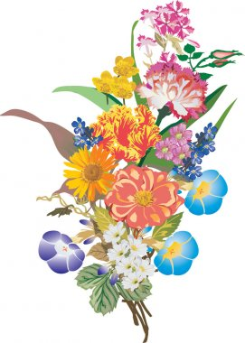 bunch of different flowers illustration