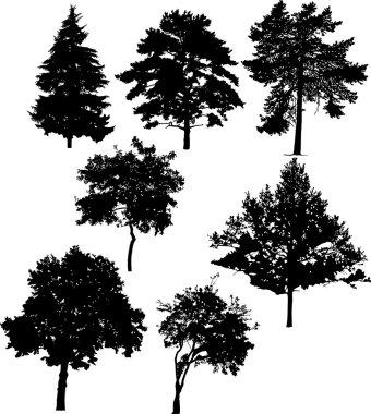 seven tree silhouettes