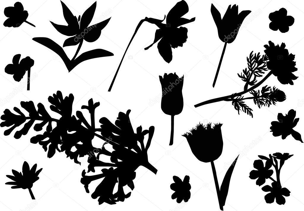 Fourteen flower silhouettes — Stock Vector