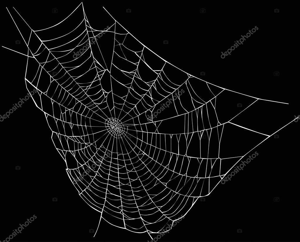 white spider web — Stock Vector © Dr.PAS #6329451