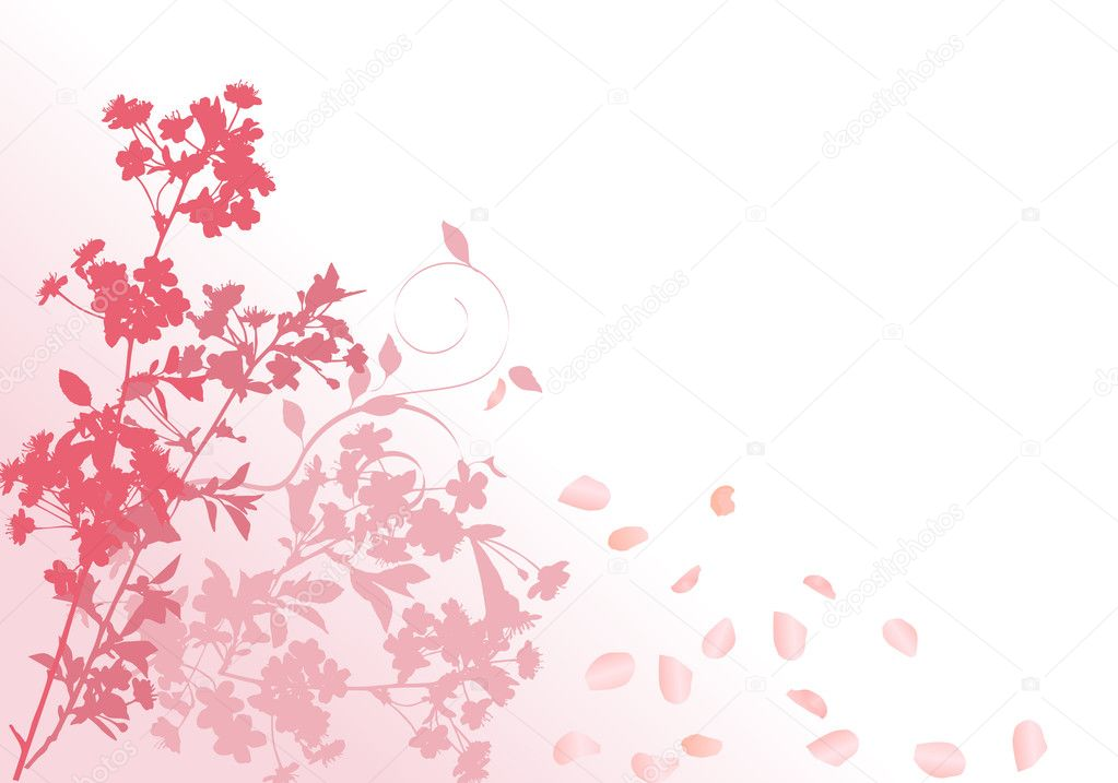 sakura falling live wallpaper free download