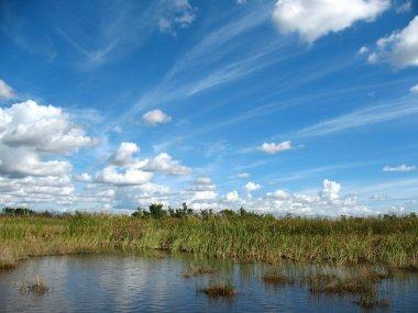 Everglages Florida