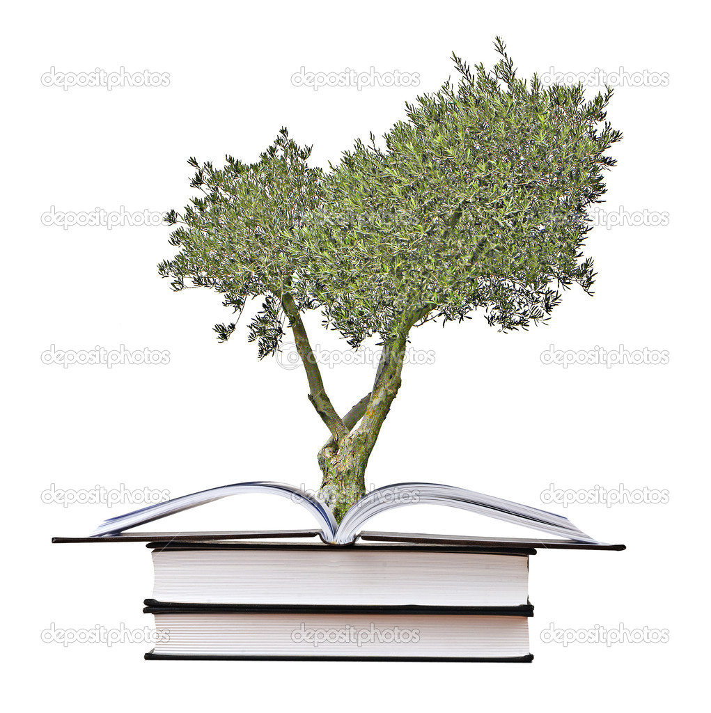 Olive tree growing from book