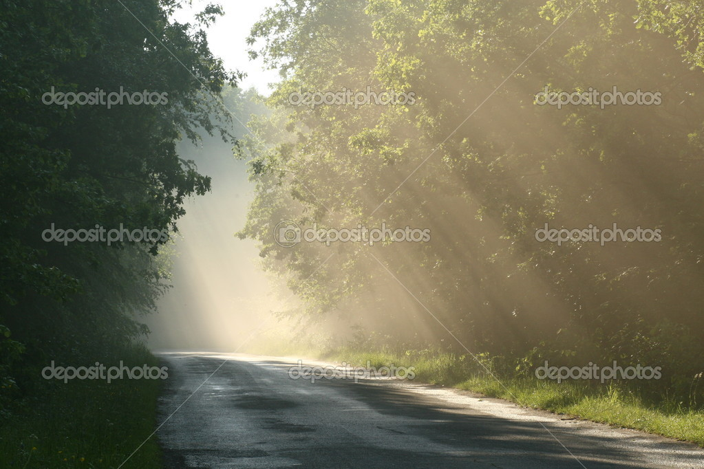 Фотообои Country road during the sunset