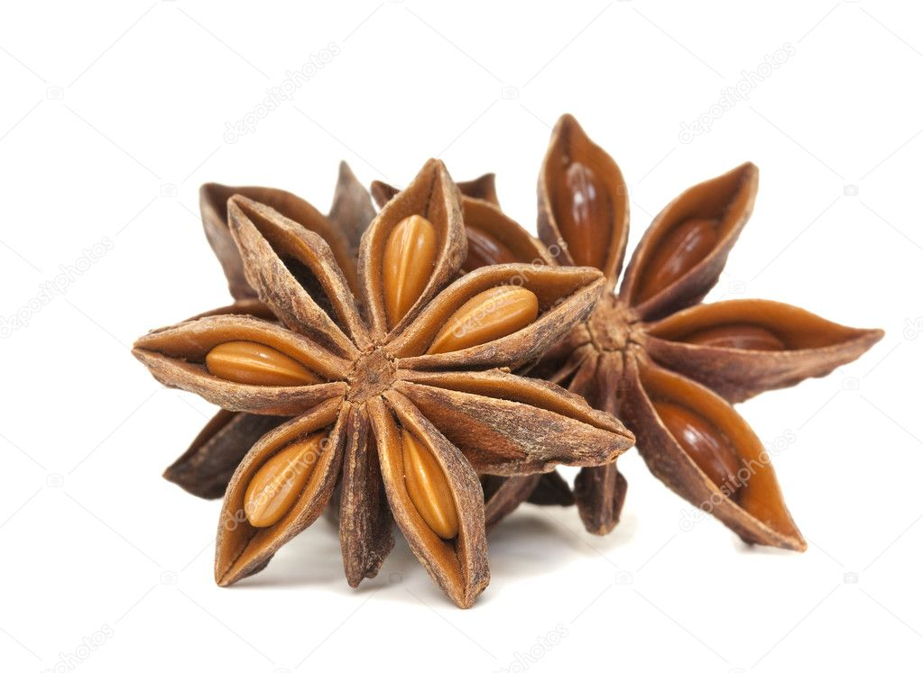 Star Anise Spice Group on white